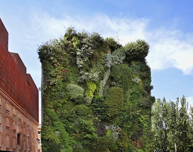 Caixa forum madrid ubicaci n horario y precios - Jardin vertical caixaforum ...